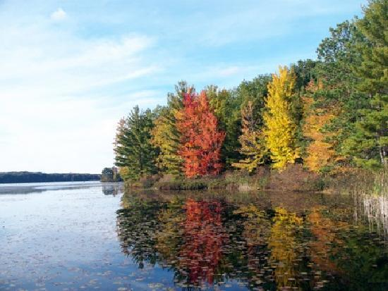 Lake 'N Pines Lodge: Fall on Lake Dubbonet