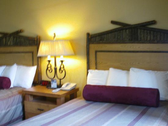 Denali Princess Wilderness Lodge: Our room