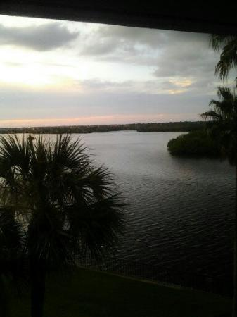 DoubleTree Suites by Hilton Tampa Bay: This is a view from our room. We had just got there so the sun was going down