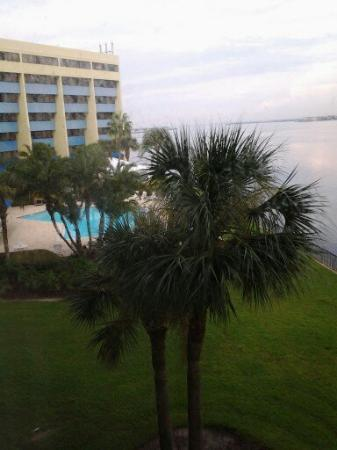 DoubleTree Suites by Hilton Tampa Bay: View from our room in the day time.