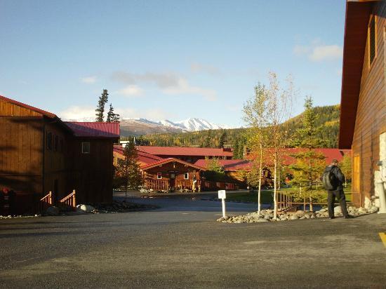 Denali Princess Wilderness Lodge: View of site & surroundings