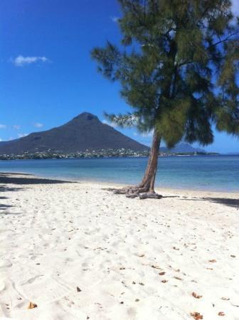 Maradiva Villas Resort and Spa: beach 