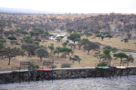 Tarangire Safari Lodge: Afternoon tea view