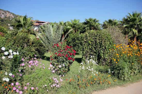 Garden of Anatolia resort
