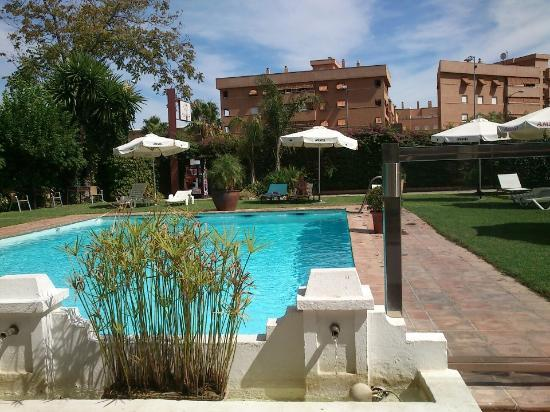 Oasis Hotel: Vista piscina 1