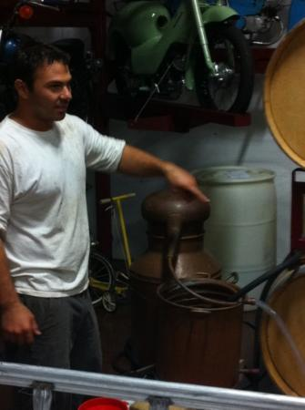 Doffo Winery: barrel room tour