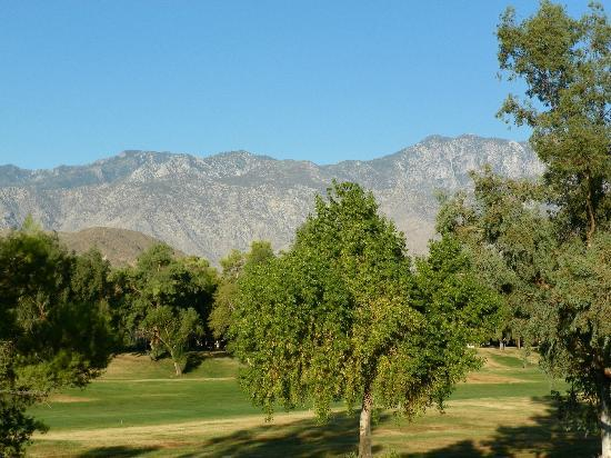 Welk Resorts Palm Springs: View from our room