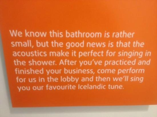 Icelandair Hotel Reykjavik Marina: This hangs above the toilet
