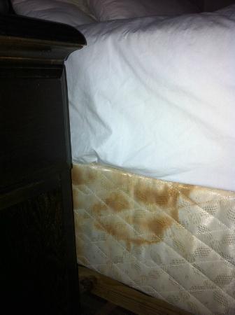 University Inn : Mysterious stains on the mattress
