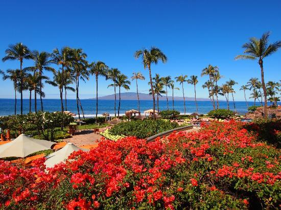 Hyatt Regency Maui Resort and Spa: Resort view