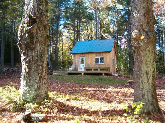 Canterbury Farm: Cabin in the woods along the ski trail