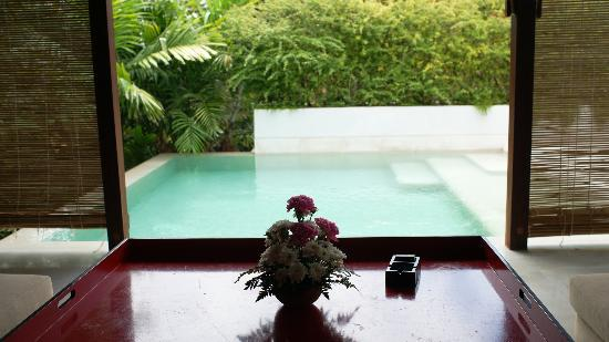 Yaiya Hua Hin: Pool at roof
