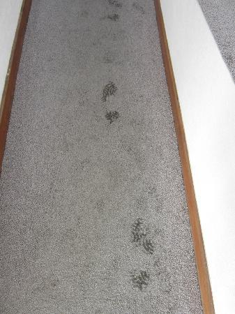 Miramar Hotel & SPA: Greasy footprints