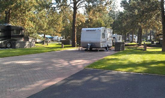 Crown Villa RV Resort: Big paved RV sites
