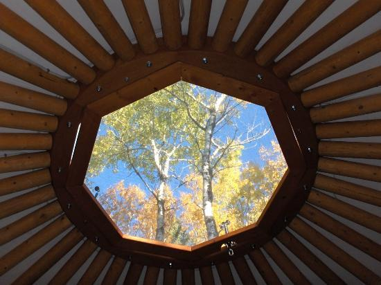 "Flora Bora Forest Lodging : ""Betty"" yurt - skylight"