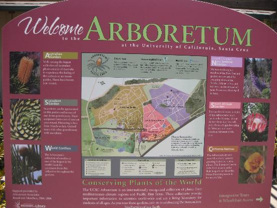 UCSC Arboretum: Overview of the Arboretum