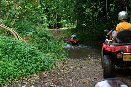 ATV Moorea Tours: Traversée rivière