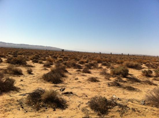 La Quinta Inn Tehachapi : high desert views in Tehemechpi