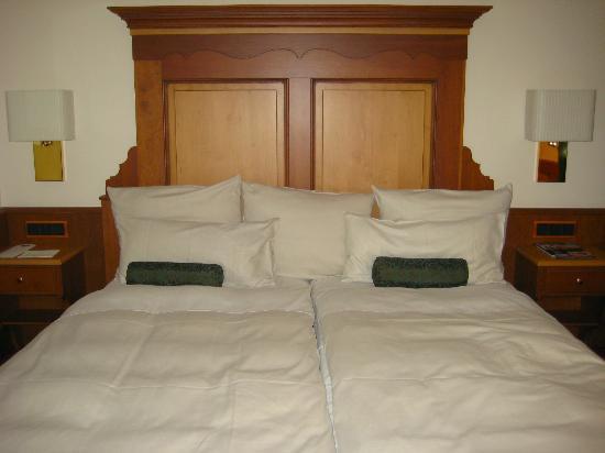 普拉茨爾酒店照片