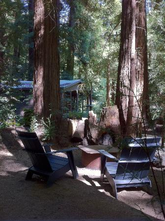 Glen Oaks Big Sur: Little Sur log cabin
