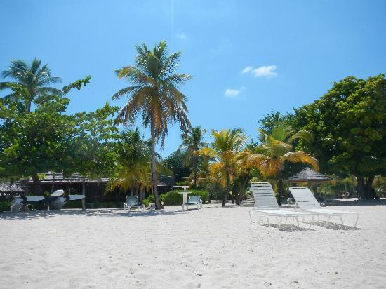 Palm Island Resort & Spa : the restaurant from the beach