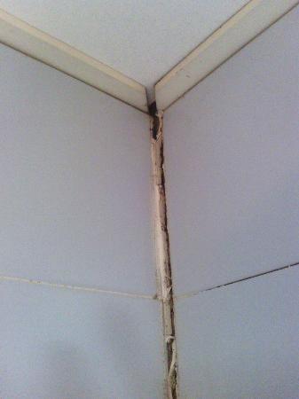 Hotel Plaisance : cracked bathroom partition