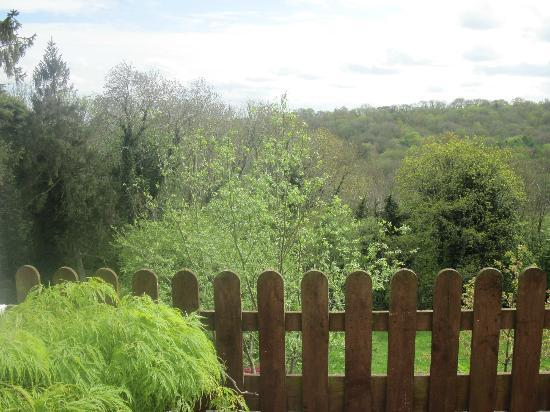 Shrubdown: View From Terrace