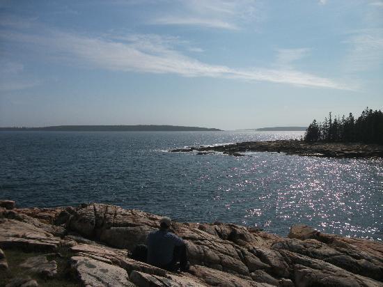 Ship Harbor Nature Trail: Contemplatif