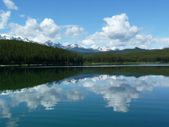 Patricia Lake Bungalows Resort: Lake View