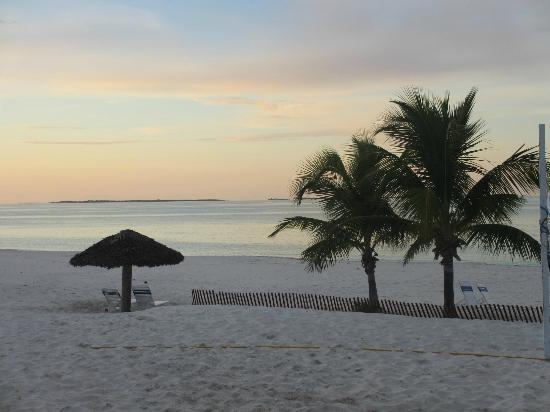 Treasure Cay Beach, Marina & Golf Resort: The beach is absolutely amazing