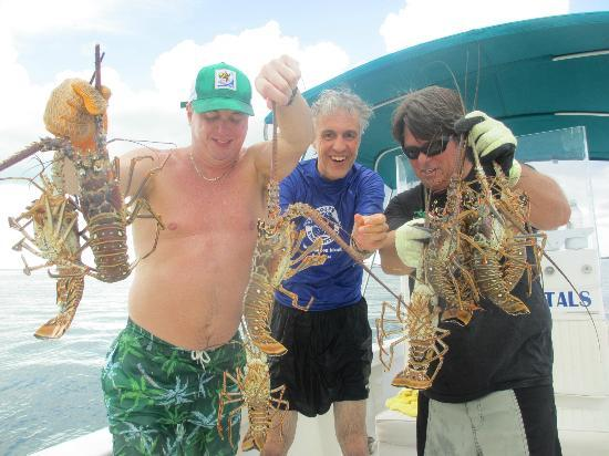 Treasure Cay, Great Abaco Island: we caught our own lobster and conch!