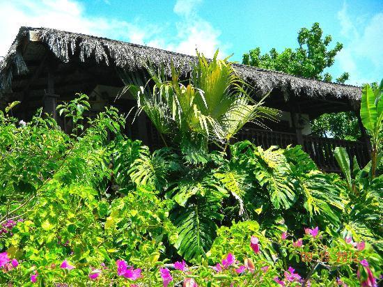 Villas Sur Mer: Cottage # 8