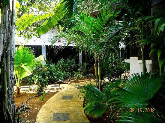 Villas Sur Mer: Tropical landscape
