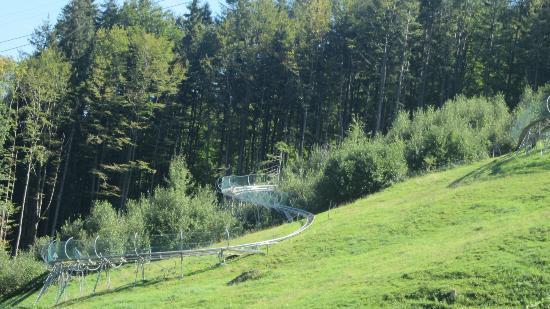 Alpsee Bergwelt: Part of Germany's longest rollercoaster.