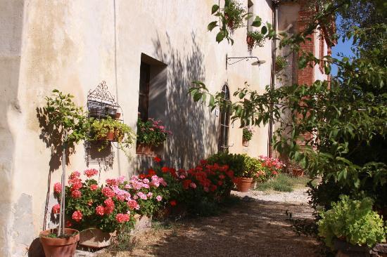 La Canonica di Fungaia: les fleurs de Claudia