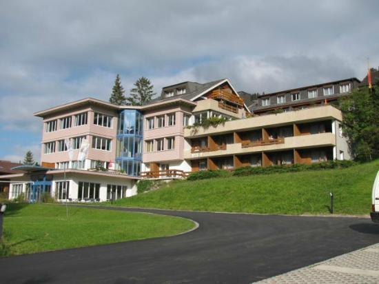 Ferien- und Familienhotel Alpina: The hotel