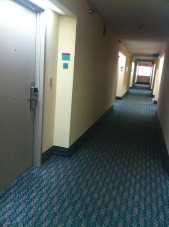Hampton Inn Brooksville / Dade City: hallway