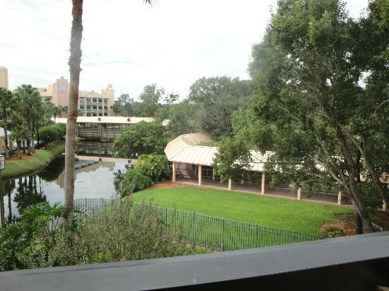 Hilton Orlando Buena Vista Palace Disney Springs: from 3rd floor room