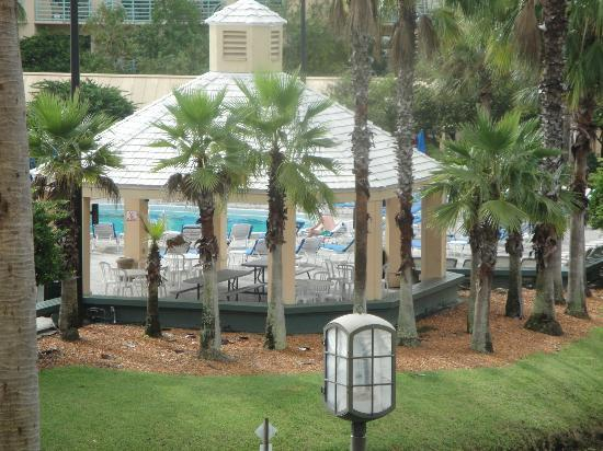 Hilton Orlando Buena Vista Palace Disney Springs: from room