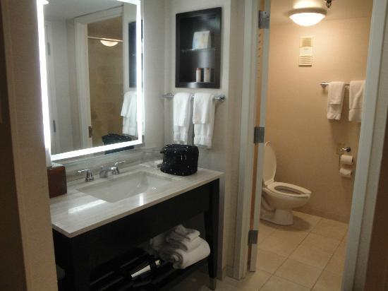 Buena Vista Palace: Not much space on bathroom counter but enough for me