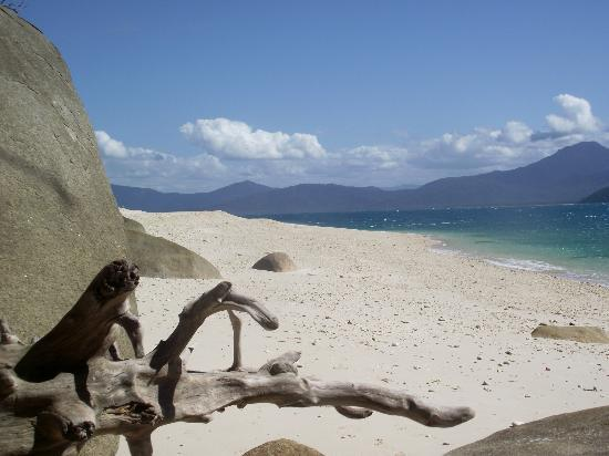 Fitzroy Island Resort : My photo of
