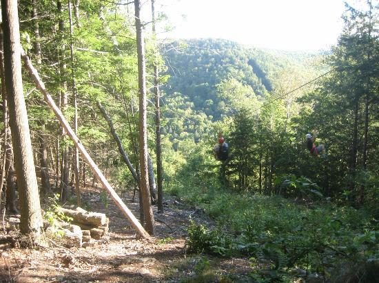 Berkshire East Canopy Tours 사진