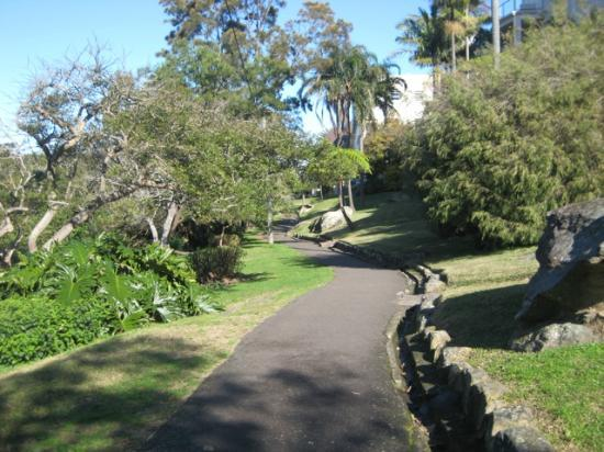 Cremorne Point to Mosman Bay Walk: Easy stroll; past the garden where two local garden enthusiasts have left a splenour contributio
