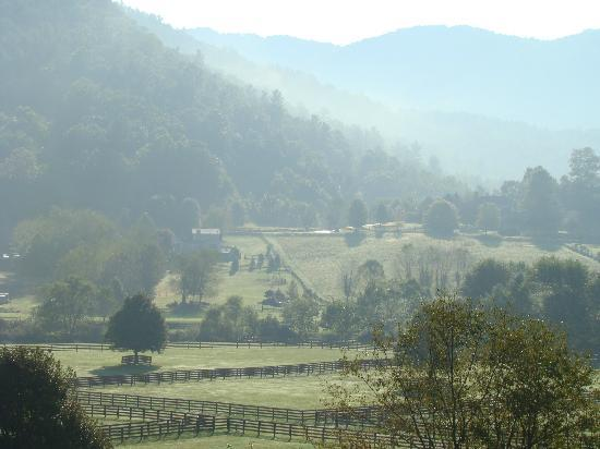 Valle Crucis Bed & Breakfast: Misty morning.