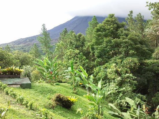 Arenal Observatory Lodge & Spa: View from restaurant