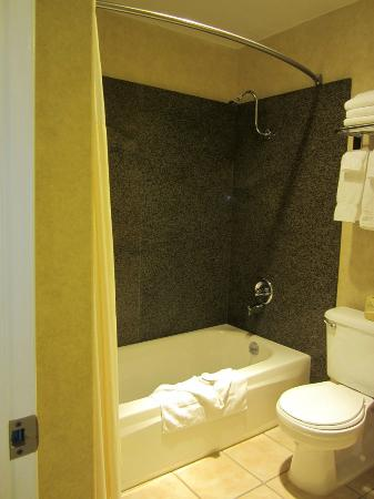 BEST WESTERN Pier Point Inn: Shower-tub