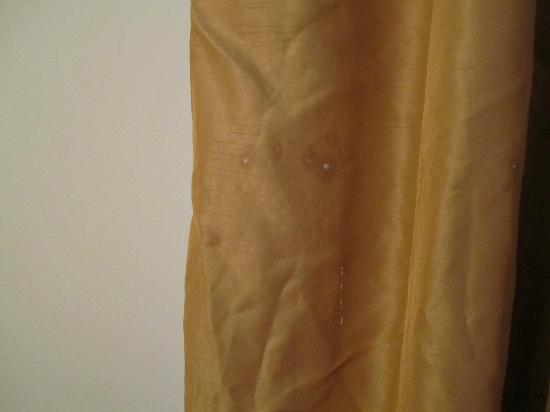 Lake Placid Summit Hotel: Stains/stuff on the curtains...