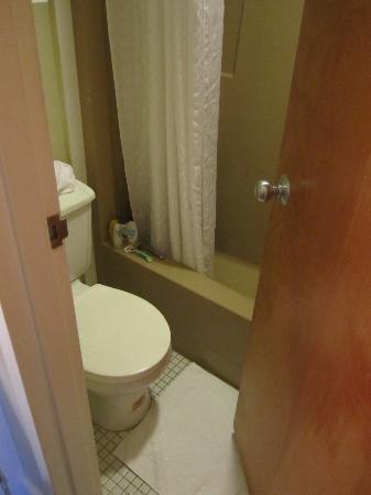 Lake Placid Summit Hotel: TINY bathroom.