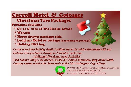 Carroll Motel & Cottages : Holiday Tree Packages offered every year