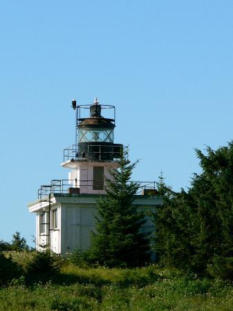 Eagles on Guard Island Lighthouse